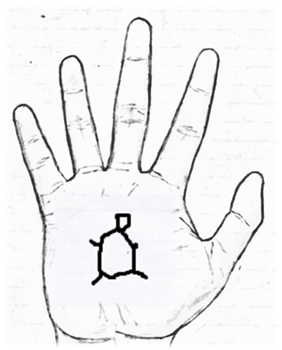 Sign of a Tortoise in palmistry
