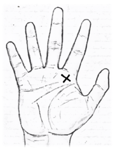 LOVE MARRIAGE INDICATIONS/LOVE LINE PALM READING (PALMISTRY)