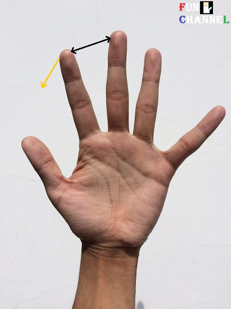 Space between index finger and middle finger