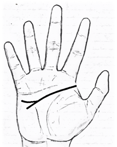 forked head line in palmistry