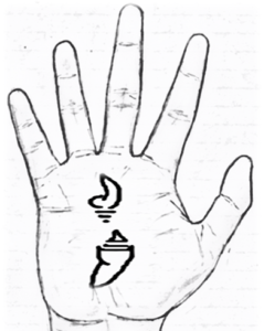 Conch sign/shankh sign in palmistry