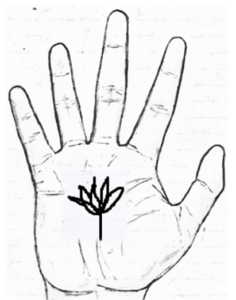Lotus sign on palm palmistry