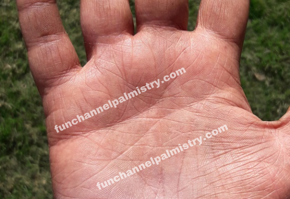 divorce line in male palm