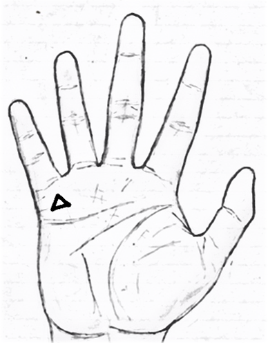 Triangle on mount of mercury in palmistry