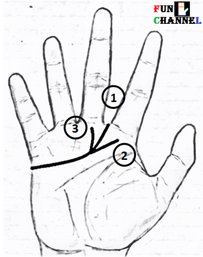 Heart line in palmistry