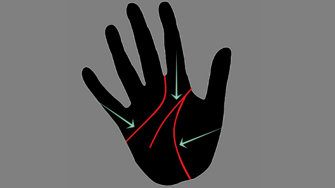 Major lines in palmistry-heart line,head line and the life line