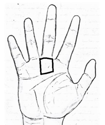 mount of Saturn in palmistry