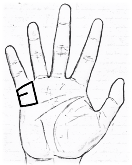 Mount of Mercury in palmistry