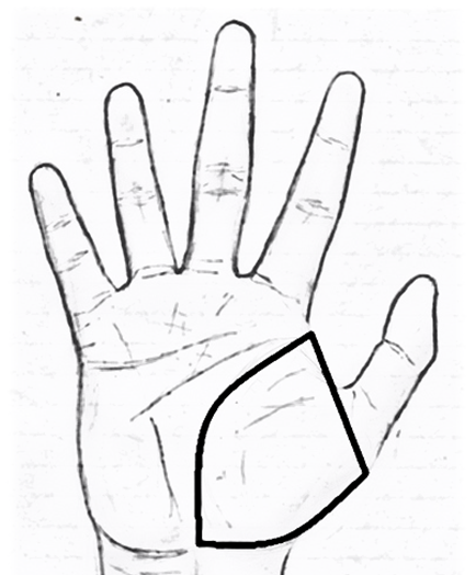 Mount of Venus in palmistry