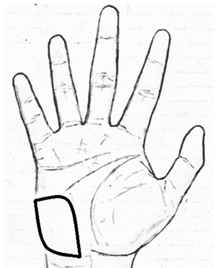 Mount of Moon/Mount of Luna in palmistry
