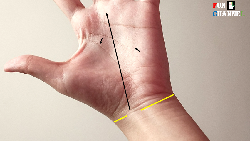 breaks on bracelet or wrist lines in palmistry