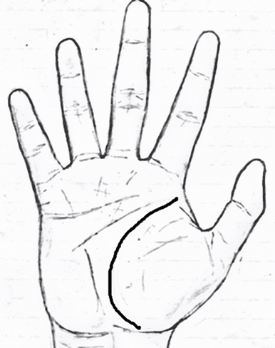 Curved Life line in palmistry