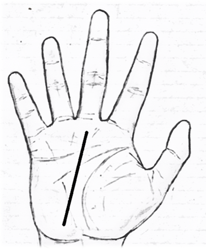 fate line/destiny line/career line in palmistry