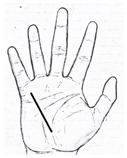 Mercury line/Business line/health line in palmistry