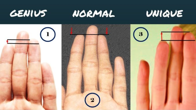 Length of the fingers and your personality
