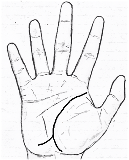 Line from life line to mount of moon palmistry