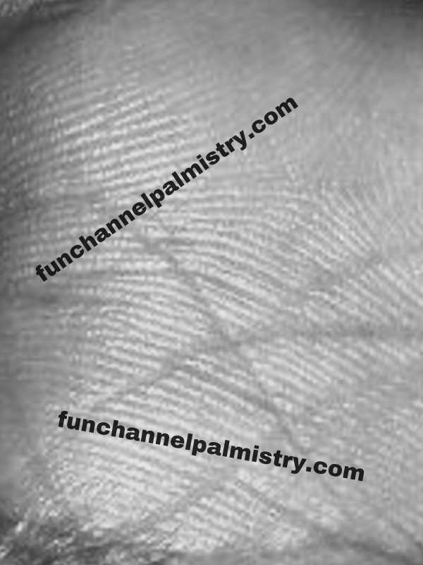 drum sign in palmistry