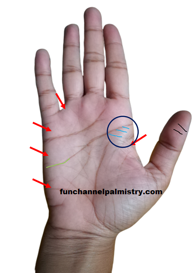 flat mounts in palmistry