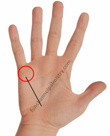 long mercury line in palmistry