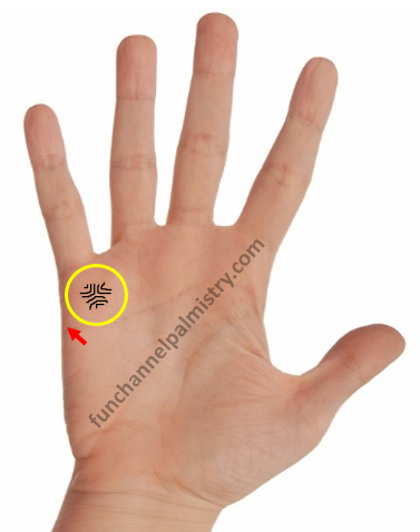 apex in palmistry