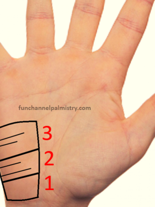 foreign travel in palmistry